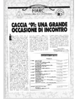 Notiziario_Fiarc_1991-02_22