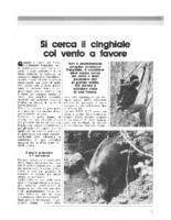 speciale tiro con l'arco 1988-45-4